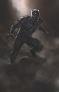 Black-Panther Andy Park Concept 3