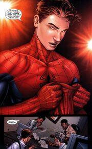 Spidermanpeterparker3