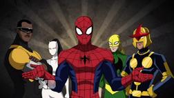 Spider Equipo