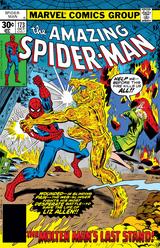 Amazing Spider-Man Vol 1 173