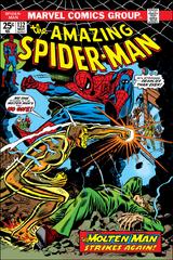 Amazing Spider-Man Vol 1 132