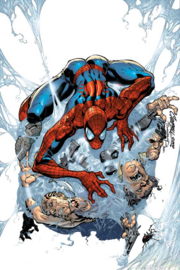 Amazing Spider-Man's webs