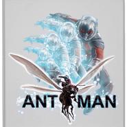Civil War - Cuadro Ant-Man
