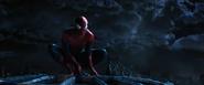 Spider-Man noche