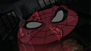 Senal de Spider Man sobre los ladrones - Natural Selection