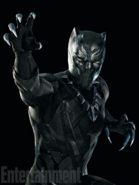 Black Panther CACW