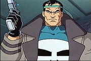 Punisher (spider man)