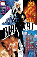 Black Cat Vol 1 4