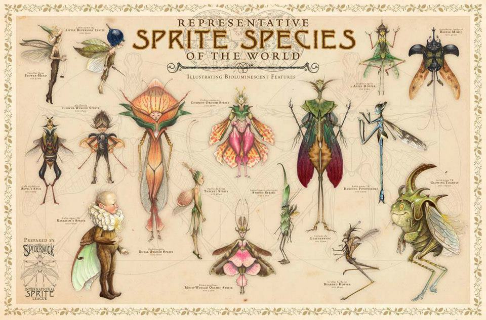 The Spiderwick Chronicles The Field Guide Pdf
