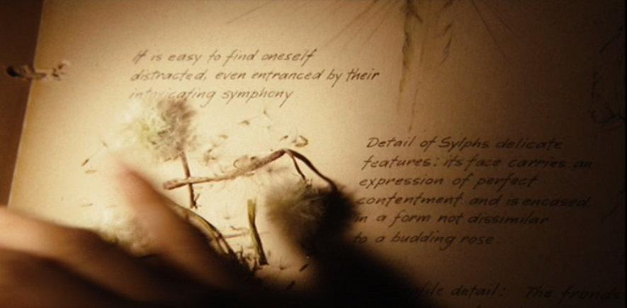spiderwick chronicles the seeing stone pdf
