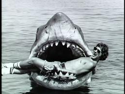 Jaws steven bruce