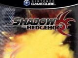 Through Shadow's Eyes