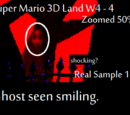 Super Mario 3D Land: Smiling Ghost