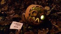 2019 Pumpkin Carving Contest Spiralka-Chan Punch