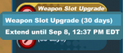 Usable-Weapon Slot Upgrade-Extend