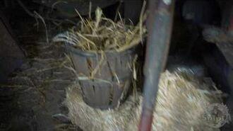 2.5 Ft Hay Bale Popper - Spirit Halloween