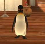 Penguinroom