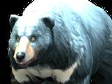Spirit Animals Game/Spirit Animals