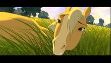 Spirit-Stallion-of-the-Cimarron-spirit-stallion-of-the-cimarron-12407303-780-436