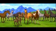 Spirit-Stallion-of-the-Cimarron-spirit-stallion-of-the-cimarron-12707984-780-436