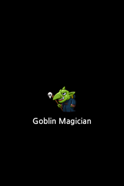 IMG 2541