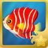 Peppermint Pygmy Angelfish§Headericon