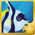 Schooling Bannerfish§Headericon