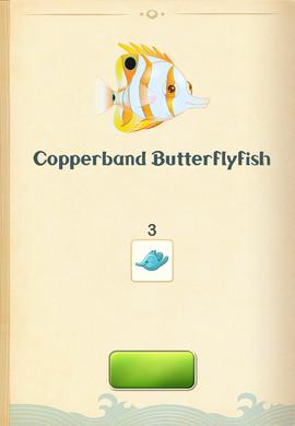 Copperband Butterflyfish§Aquapedia