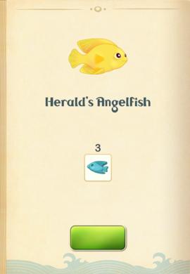 Herald's Angelfish§Aquapedia