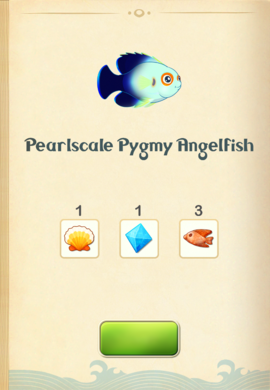 Pearlscale Pygmy Angelfish§Aquapedia