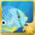 Foureye Butterflyfish§Headericon.png