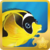 Racoon Butterflyfish§Headericon