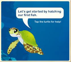 Tutorial§Turtle