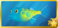 Yellow Boxfish§Headericon