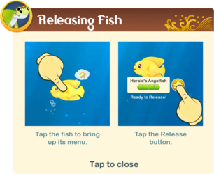 Tutorial§10 Releasing Fish