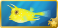 Longhorn Cowfish§Headericon