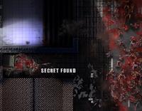 Secret8a