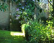 Artistic-effect-on-lush-garden-1507288568zWm