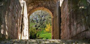 Door-to-secret-garden