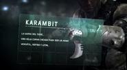 Equipo Blacklist - Karambit