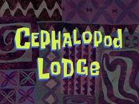 Cephalopod Lodge