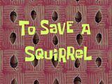 Przeżyć wiewiórkę