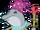 Delfin Wojownik