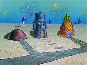 Reef Blower Gallery (01)