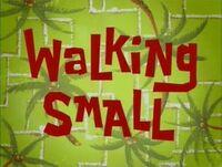 Walkingsmall