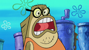 Moving Bubble Bass 027