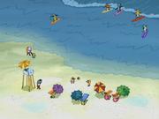 SpongeBoard 001