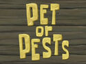 Pet or Pests