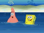 SpongeBoard 004