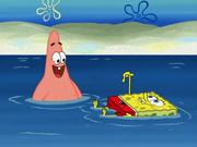 SpongeBoard 008
